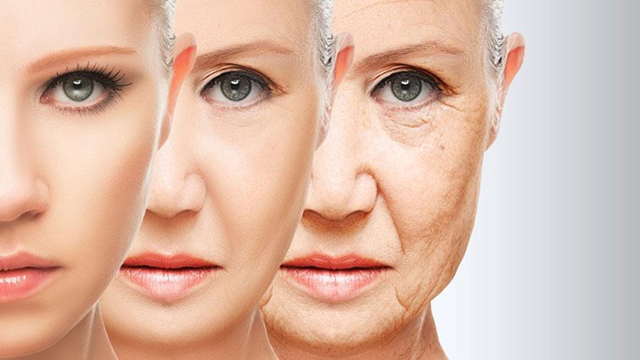 menopausa pele