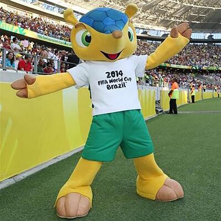 Fuleco - Brasil 2010