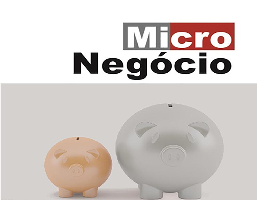 Micronegócio